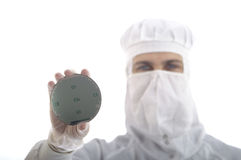 Tech man. A man showing a wafer with chips Stock Photography