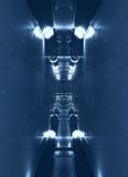 Technical corridor. Long narrow corridor with two rows of lamps from above and from below. Blue toning Stock Photos