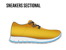 Technical illustration of a shoes sectional. Royalty Free Stock Photography