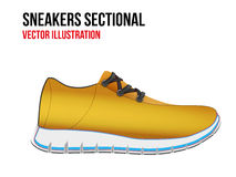 Technical illustration of a shoes sectional Royalty Free Stock Photography