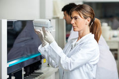 Technician Analyzing Samples Stock Image