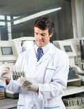 Technician Analyzing Urine Samples In Laboratory. Mid adult male technician analyzing urine samples in laboratory Royalty Free Stock Photography