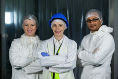 Technician and butchers standing with arms crossed. Portrait of technician and butchers standing with arms crossed at meat factory Stock Photography