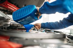 Free Technician Change Oil In The Car Engine Stock Photography - 130009862