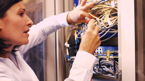 Technician checking cables in a rack mounted server. Close-Up of technician checking cables in a rack mounted server 4k stock video footage