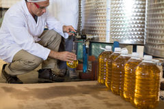 Technician examining olive oil. In factory Stock Photos
