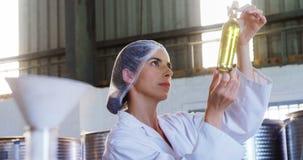 Technician examining olive oil 4k stock footage