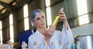 Technician examining olive oil 4k stock video
