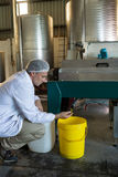 Technician examining olive oil produced from machine. In factory Stock Photo