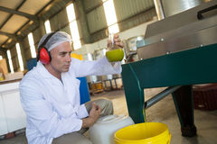 Technician examining olive oil produced from machine. In factory Royalty Free Stock Photo