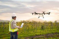 Technician farmer use wifi computer control agriculture drone fly to sprayed fertilizer on grape field, Smart farm concept stock image