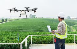 .Technician farmer use wifi computer control agriculture drone fly to sprayed fertilizer on the tea fields stock photography