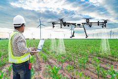 Technician farmer use wifi computer control agriculture drone. Fly to sprayed fertilizer on the corn fields stock photography