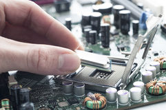 Technician inserting CPU in motherboard Royalty Free Stock Photography