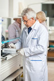 Technician Loading Analyzer With Samples. Male technician loading analyzer with samples in laboratory Stock Photo