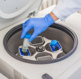 Technician loading a sample to centrifuge machine Stock Photography