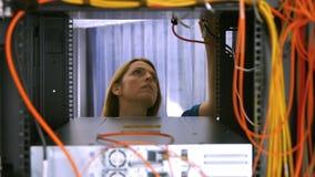 Technician looking at open server locker stock video footage