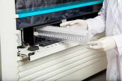 Technician Placing Samples In Analyzer Royalty Free Stock Image
