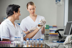 Technicians Analyzing Sample In Medical Laboratory Stock Image