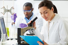 Technicians Carrying Out Research In Laboratory. Looking at Folder stock photography
