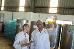 Technicians examining olive oil. In factory Stock Photo