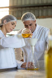 Technicians examining olive oil. In factory Royalty Free Stock Photo