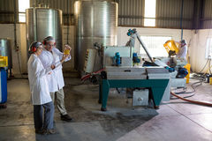 Technicians examining olive oil. In factory Stock Photography