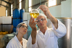 Technicians examining olive oil. In factory Royalty Free Stock Photos
