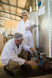 Technicians examining olive oil. In factory Royalty Free Stock Images