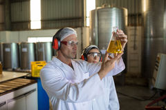 Technicians examining olive oil. In factory Royalty Free Stock Image