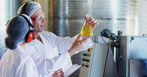 Technicians examining olive oil. In factory stock video