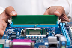 Technicians hands installing user memory. On a computer main-board Royalty Free Stock Photos