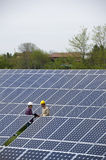 Technicians at Solar Power Station Royalty Free Stock Image