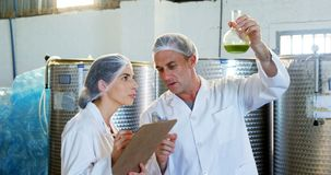 Technicians writing on clipboard while examining olive oil 4k. Technicians writing on clipboard while examining olive oil in factory 4k stock video footage