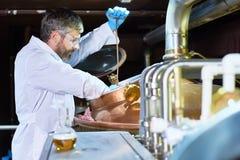 Technicien de brassage occupé vérifiant le processus de fermentation photos libres de droits