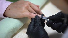Technicien de clou enlevant la cuticle de clous avec la pince, hygiène dans le salon de beauté clips vidéos