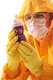 Technicien de laboratoire examinant une bouteille image stock