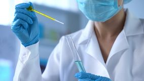 Technicien de laboratoire s'égouttant le liquide jaune dans le tube à essai, contrôle de qualité d'huile, expérience image libre de droits