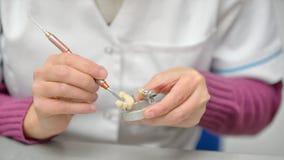 Technicien dentaire Working Photographie stock