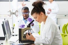 Techniciens effectuant la recherche dans le laboratoire photos stock