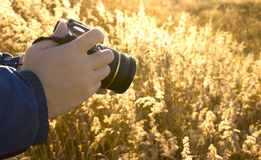 Technics of photographing. Of a landscape of a field on an example Stock Photography