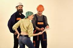 Techniczny zadania pojęcie Brygada pracownicy, budowniczowie w hełmach, naprawiacze i dama dyskutuje kontrakt, białego zdjęcie royalty free