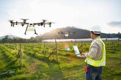 Technik średniorolny używa wifi komputerowej kontroli rolnictwa trutnia komarnicy rozpylający użyźniacz na winogrona polu, Mądrze obrazy royalty free