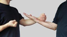 Techniki Skrzydłowy Chun Kung Fu w występie atlety Fotografia Royalty Free