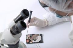 Technischer Chirurg, der an Festplattenlaufwerk - Datenwiederaufnahme arbeitet Stockfoto