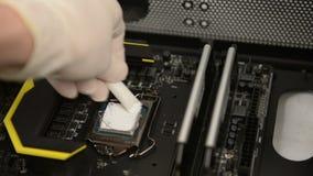 Technitian aplica a pasta térmica no processador central Imagem de Stock