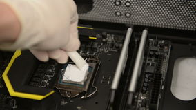 Technitian applies thermal paste on CPU Stock Image