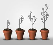 Technological growth and computing exponential advancements in programming as electronic circuit board symbols in a plant pot royalty free illustration
