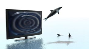 Technological Leap. Dolphin jumping out from a TV representing Technological Leap Royalty Free Stock Images