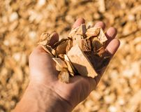 Technological wood chips for the production of MDF boards. Selective focus Royalty Free Stock Image